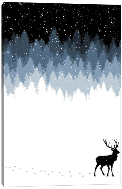 Winter Night Canvas Art Print