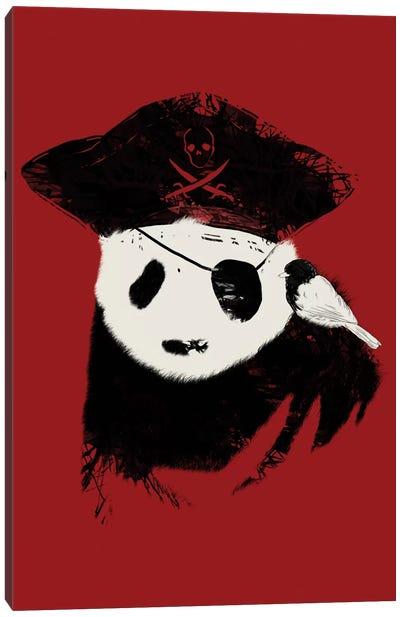 Bio Piracy Canvas Art Print
