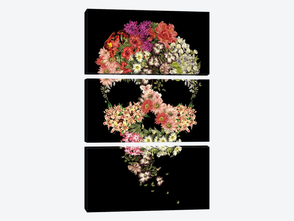 Skull Floral Decay by Tobias Fonseca 3-piece Canvas Wall Art