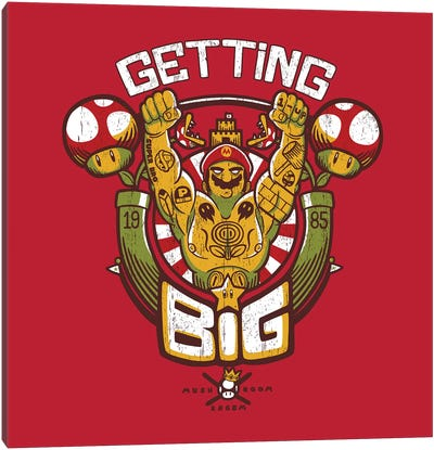 Getting Big Red Canvas Art Print