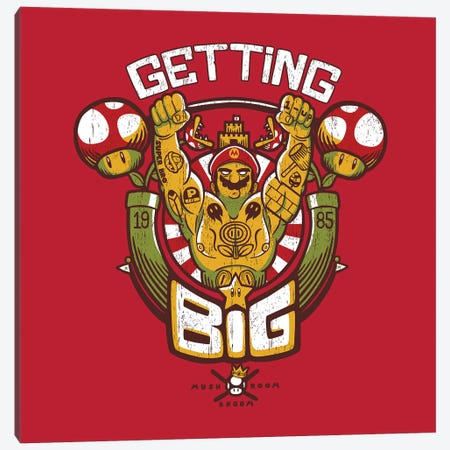 Getting Big Red 3-Piece Canvas #TFA419} by Tobias Fonseca Canvas Art