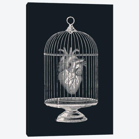 Free My Heart Canvas Print #TFA421} by Tobias Fonseca Art Print