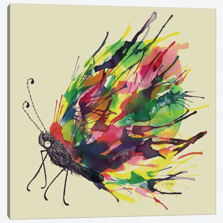 Black Cocoon Canvas Print #TFA42} by Tobias Fonseca Canvas Art