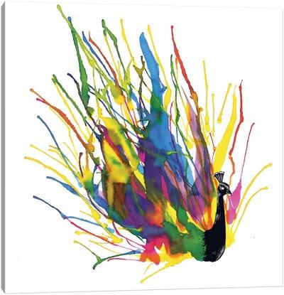 Colorful Peacock Canvas Print #TFA47