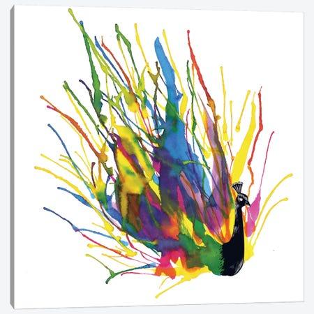 Colorful Peacock Canvas Print #TFA47} by Tobias Fonseca Canvas Art Print