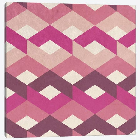Pink Fancy Pattern Canvas Print #TFA486} by Tobias Fonseca Canvas Wall Art