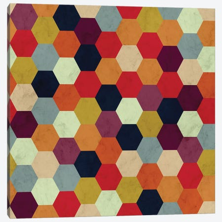 Colorful Beehive Pattern Canvas Print #TFA531} by Tobias Fonseca Canvas Art Print