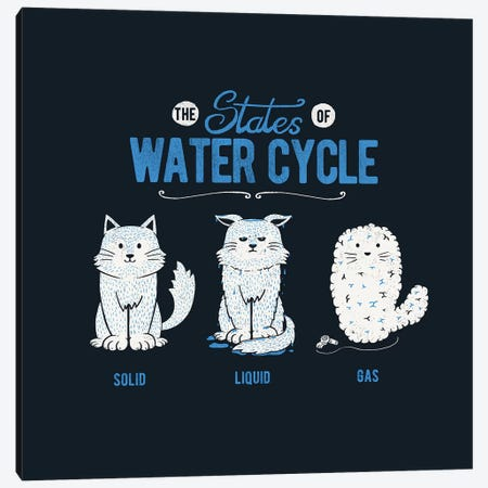 The States Of The Water Cycle Canvas Print #TFA577} by Tobias Fonseca Canvas Artwork