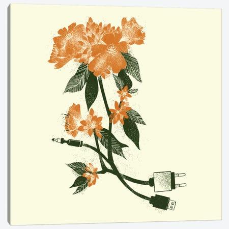 Digita Lflower Canvas Print #TFA58} by Tobias Fonseca Canvas Art Print
