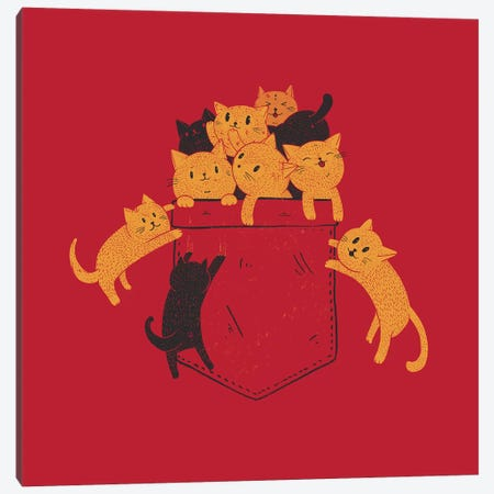 Pocket Cats Canvas Print #TFA594} by Tobias Fonseca Canvas Wall Art