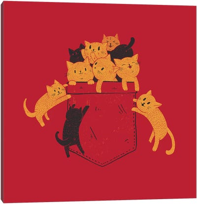 Pocket Cats Canvas Art Print