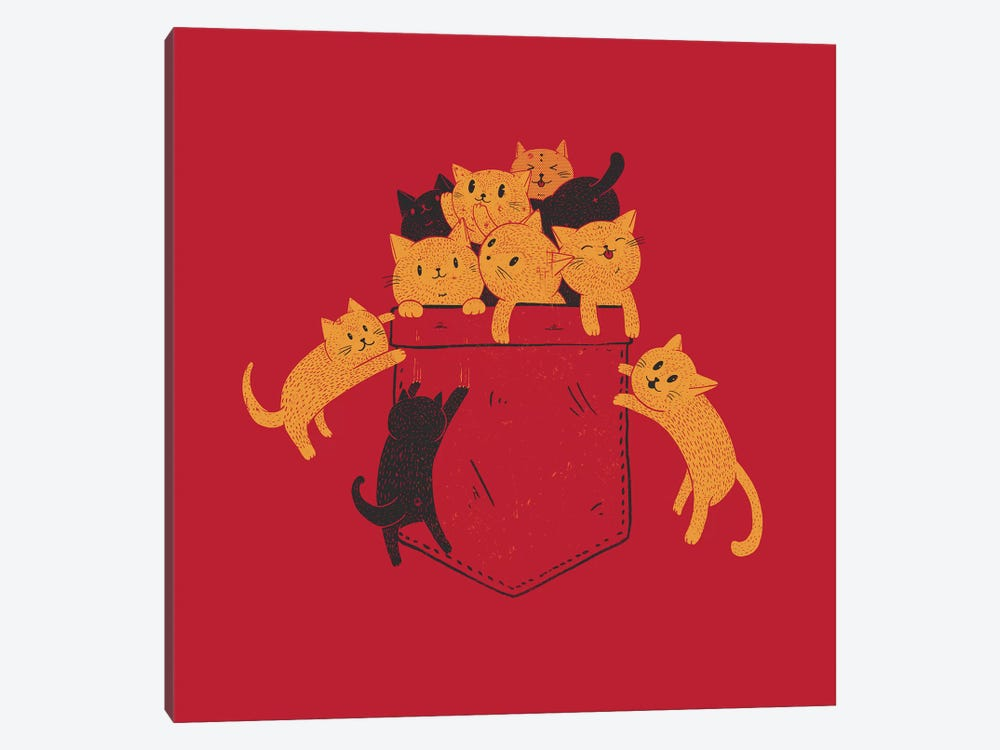 Pocket Cats by Tobias Fonseca 1-piece Canvas Wall Art