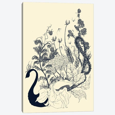 Floralia Canvas Print #TFA63} by Tobias Fonseca Canvas Wall Art