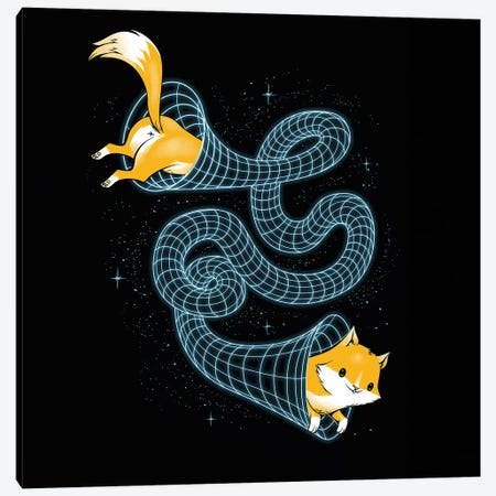 Wormhole Cat Universe Canvas Print #TFA661} by Tobias Fonseca Canvas Art Print
