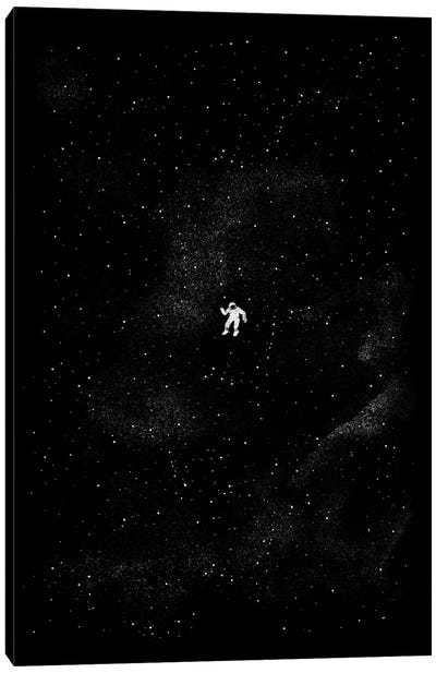 Gravity Canvas Art Print