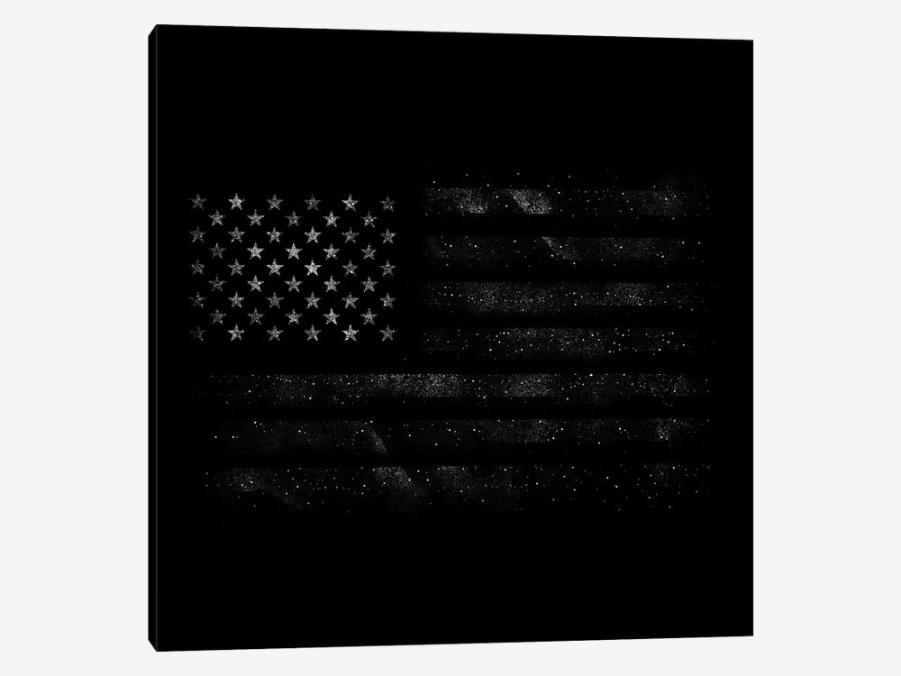 American Flag by Tobias Fonseca 1-piece Canvas Wall Art