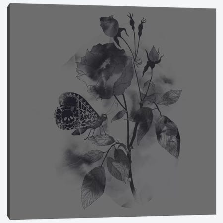 Inked Canvas Print #TFA76} by Tobias Fonseca Canvas Art
