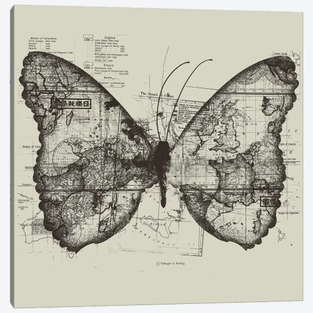 Butterfly Effect Canvas Print #TFA92} by Tobias Fonseca Canvas Art Print