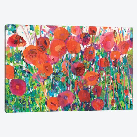 Vivid Poppy Collage III Canvas Print #TFG25} by Tara Funk Grim Art Print
