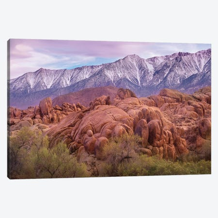 Sierra Nevada Mountains From The Alabama Hills, California Canvas Print #TFI1007} by Tim Fitzharris Canvas Art
