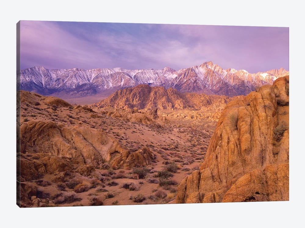 Sierra Nevada Range From Alabama Hills, California by Tim Fitzharris 1-piece Art Print