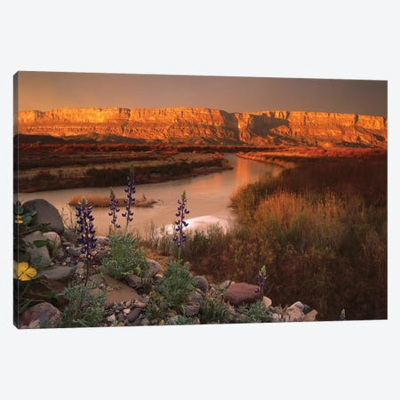 Sierra Ponce And Rio Grande, Big Bend National Park, Texas Canvas Print #TFI1009} by Tim Fitzharris Canvas Art Print