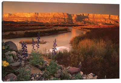 Sierra Ponce And Rio Grande, Big Bend National Park, Texas Canvas Art Print