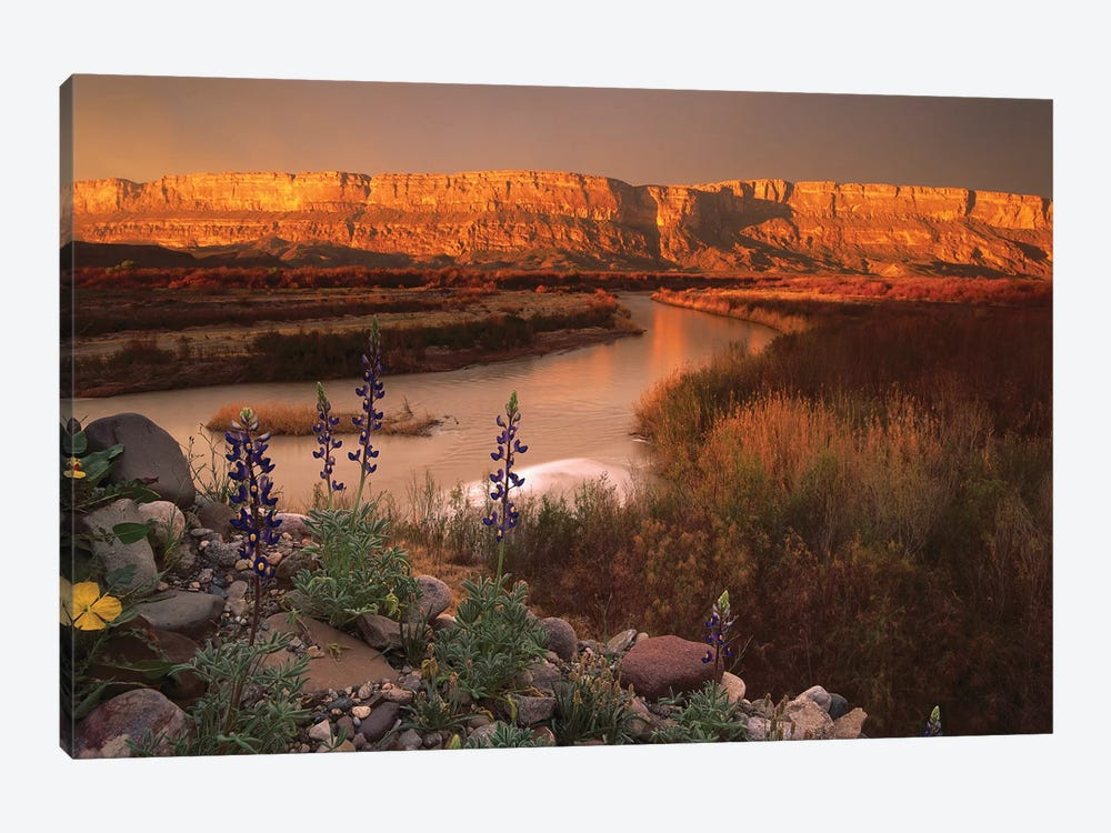 Sierra Ponce And Rio Grande, Big Bend National Park, Texas by Tim Fitzharris 1-piece Canvas Art
