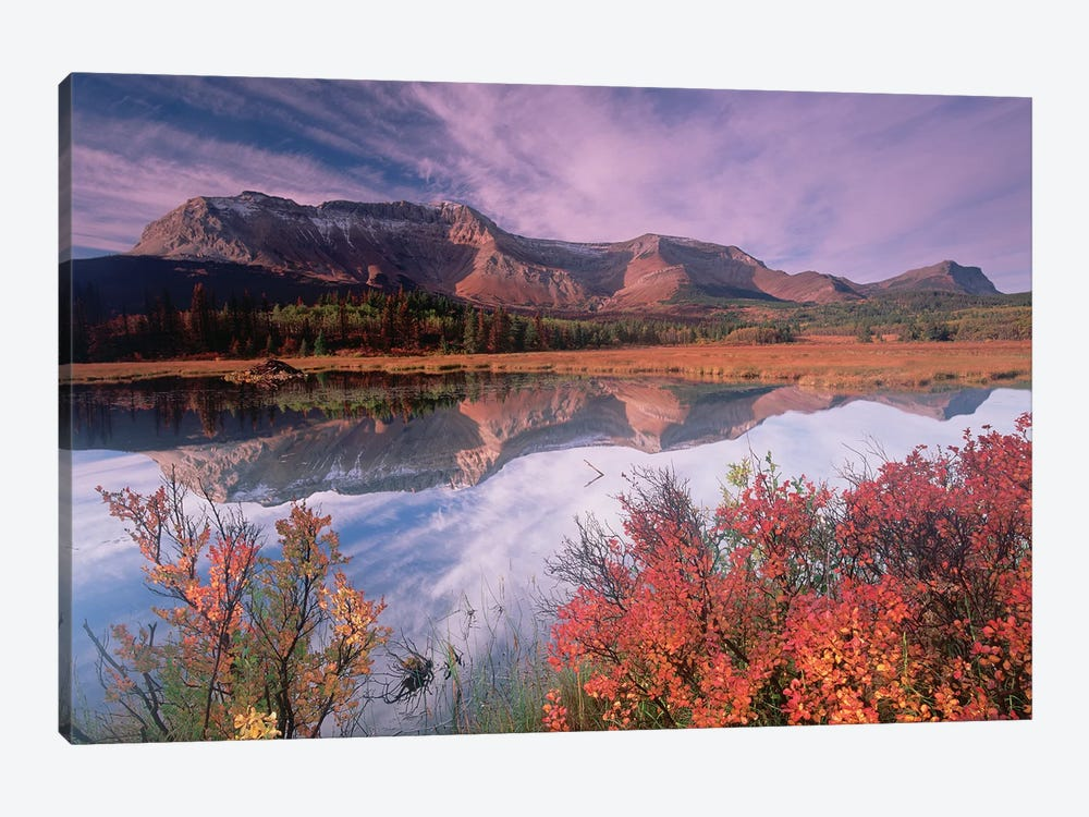 Sofa Mountain, Waterton Lakes National Park, Alberta, Canada by Tim Fitzharris 1-piece Art Print