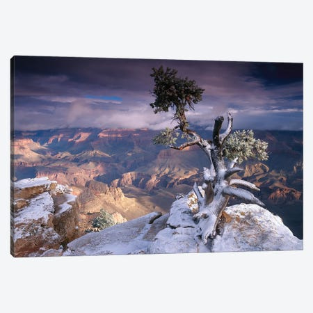 South Rim Of Grand Canyon With A Dusting Of Snow Seen From Yaki Point, Grand Canyon National Park, Arizona Canvas Print #TFI1022} by Tim Fitzharris Art Print
