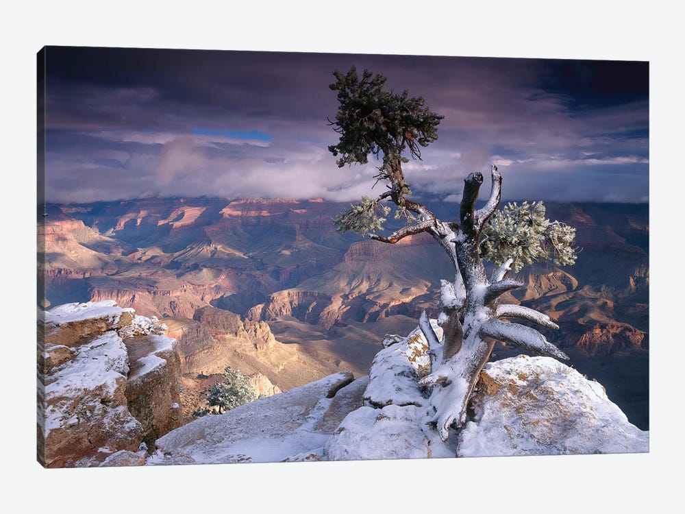 South Rim Of Grand Canyon With A Dusting Of Snow Seen From Yaki Point, Grand Canyon National Park, Arizona by Tim Fitzharris 1-piece Canvas Art Print