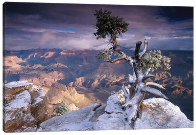 South Rim Of Grand Canyon With A Dusting Of Snow Seen From Yaki Point, Grand Canyon National Park, Arizona Canvas Art Print