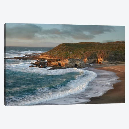 Spooner's Cove, Montano De Oro State Park, California Canvas Print #TFI1024} by Tim Fitzharris Canvas Art