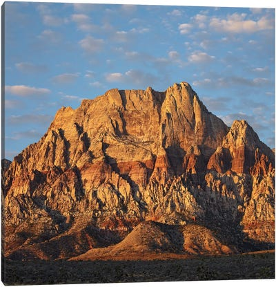 Spring Mountains, Red Rock Canyon National Conservation Area Near Las Vegas, Nevada Canvas Art Print