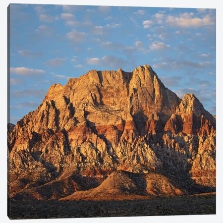 Spring Mountains, Red Rock Canyon National Conservation Area Near Las Vegas, Nevada Canvas Print #TFI1025} by Tim Fitzharris Canvas Wall Art