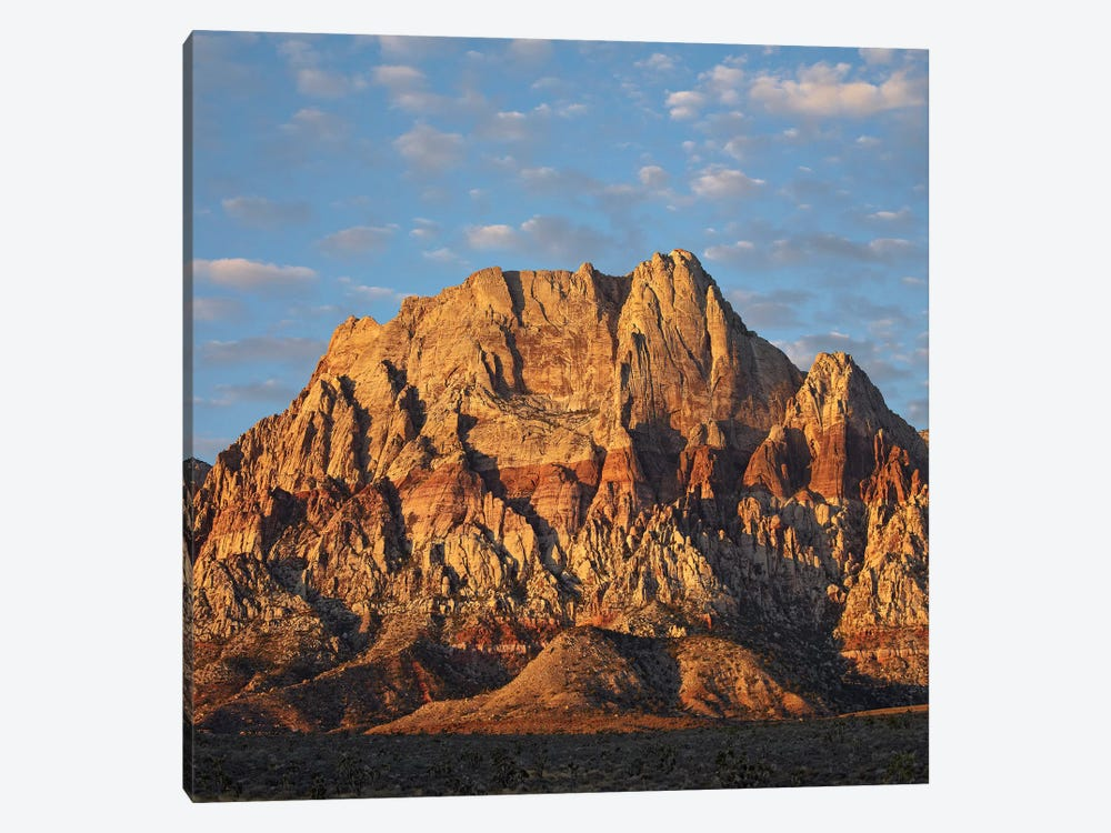 Spring Mountains, Red Rock Canyon National Conservation Area Near Las Vegas, Nevada by Tim Fitzharris 1-piece Canvas Artwork