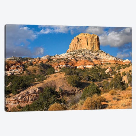 Square Butte Near Kaibito, Arizona Canvas Print #TFI1026} by Tim Fitzharris Canvas Wall Art