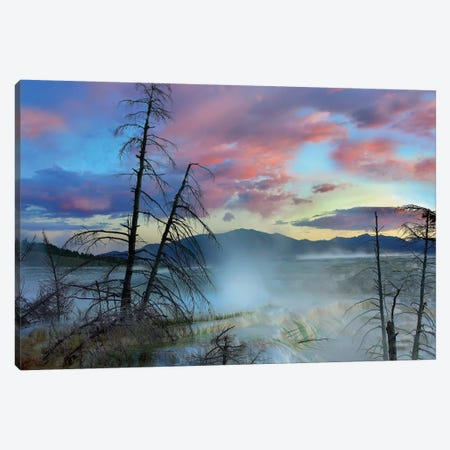 Steam Rising From Travertine Formations, Minerva Terrace, Mammoth Hot Springs, Yellowstone National Park, Wyoming Canvas Print #TFI1031} by Tim Fitzharris Canvas Artwork