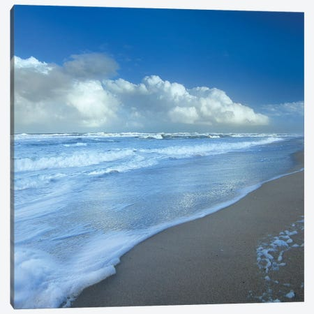 Storm Cloud Over Beach, Canaveral National Seashore, Florida Canvas Print #TFI1033} by Tim Fitzharris Canvas Artwork