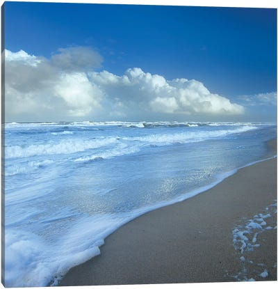 Storm Cloud Over Beach, Canaveral National Seashore, Florida Canvas Art Print