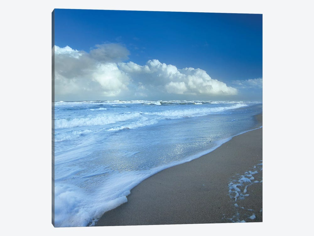 Storm Cloud Over Beach, Canaveral National Seashore, Florida by Tim Fitzharris 1-piece Art Print