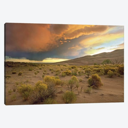 Storm Clouds Over Great Sand Dunes National Monument, Colorado Canvas Print #TFI1035} by Tim Fitzharris Canvas Print