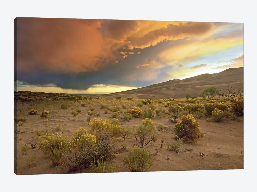 Storm Clouds Over Great Sand Dunes National Monument, Colorado by Tim Fitzharris 1-piece Canvas Print