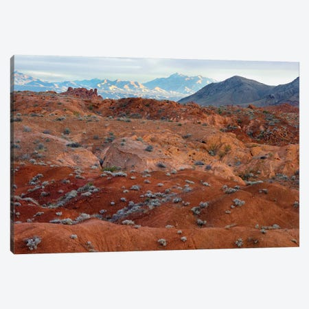 Black Mountains Surrounding Valley Of Fire State Park, Nevada Canvas Print #TFI103} by Tim Fitzharris Canvas Print