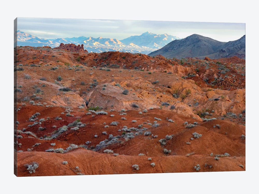 Black Mountains Surrounding Valley Of Fire State Park, Nevada by Tim Fitzharris 1-piece Canvas Artwork