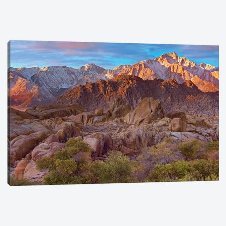 Sun Illuminating The Alabama Hills, California Canvas Print #TFI1041} by Tim Fitzharris Canvas Print