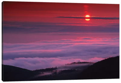 Sunrise At Hurricane Ridge, Olympic National Park, Washington Canvas Art Print