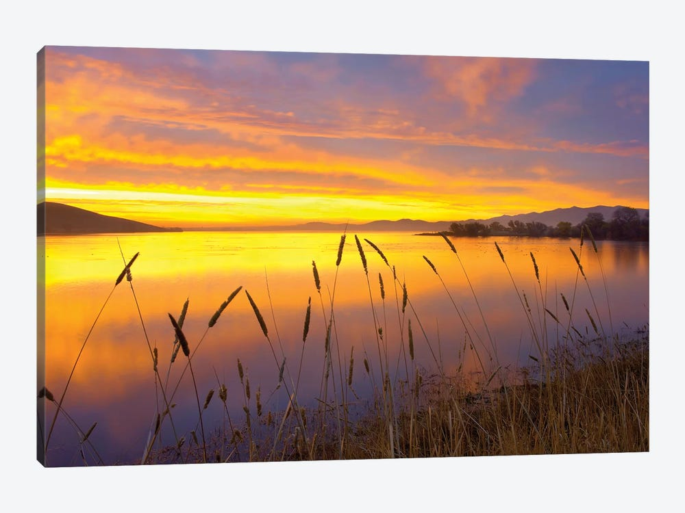 Sunrise At San Luis Reservoir, San Joaquin Valley, California by Tim Fitzharris 1-piece Art Print