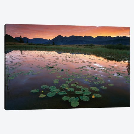 Sunrise Over Granadier Range, Molas Pass, Weminuche Wilderness, Colorado Canvas Print #TFI1049} by Tim Fitzharris Canvas Print