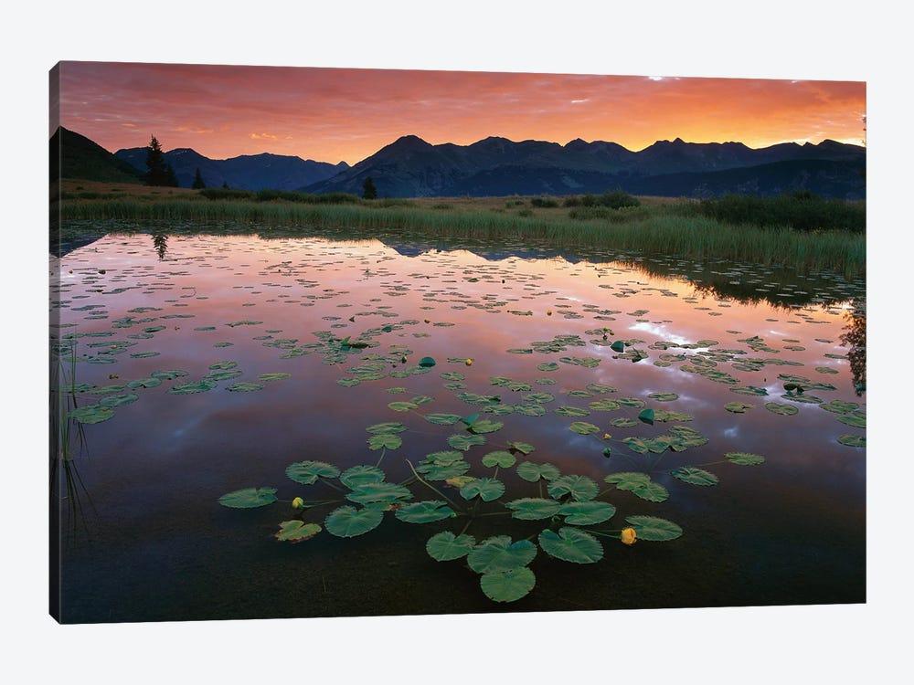 Sunrise Over Granadier Range, Molas Pass, Weminuche Wilderness, Colorado by Tim Fitzharris 1-piece Canvas Art